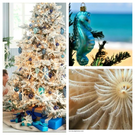 Ocean Reef christmas Collage